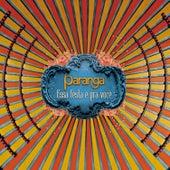 Essa Festa É Pra Você by Grupo Paranga