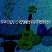 Salsa Grandes Éxitos by El Gran Combo De Puerto Rico