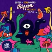 Trippin (Badjokes Remix) de Tony Romera Aazar