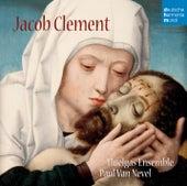 Jacob Clement by Huelgas Ensemble