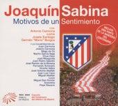 Motivos De Un Sentimiento de Joaquin Sabina