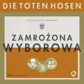 Zamrozona Wyborowa von Die Toten Hosen