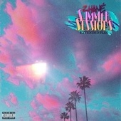 Summer Sessions by Zhane