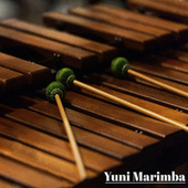 The Marimba de Yuni Marimba