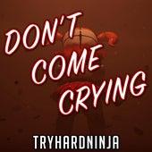 Don't Come Crying (feat. Andrea Storm Kaden) de TryHardNinja