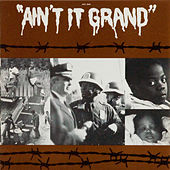 Ain't It Grand by Eric Bibb