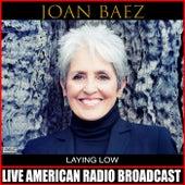 Laying Low de Joan Baez