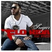 Sugar [feat. Wynter] von Flo Rida