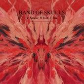 I Know What I Am digital single de Band of Skulls