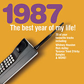 The Best Year Of My Life: 1987 by Various Artists