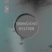 TV1 by Transient Visitor
