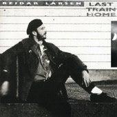 Last Train Home by Reidar Larsen