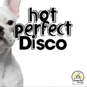 Hot Perfect Disco by Various Artists