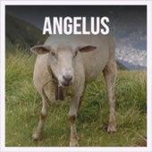 Angelus von Various Artists