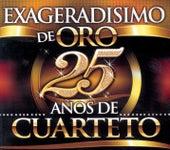 Exageradisimo De Oro - 25 Años De Cuarteto de Various Artists