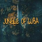 JUNGLE OF CUBA (Instrumental Version) de Super 8
