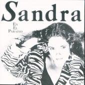 En El Paraiso de Sandra Mihanovich