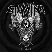 Sirkkeli by Stam1na