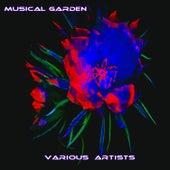 Musical Garden de Various Artists