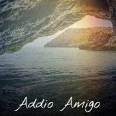 Addio Amigo by Various Artists