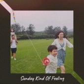 Sunday Kind Of Feeling von Various Artists
