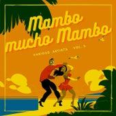 Mambo Mucho Mambo, Vol. 3 by Various Artists