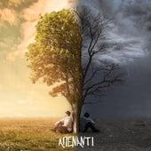 Apenanti by K 287