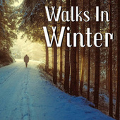 Walks In Winter de Various Artists