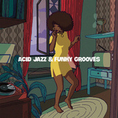 Acid Jazz & Funky Grooves by Various Artists