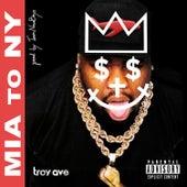 Miami to New York van Troy Ave