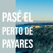Pasé El Perto De Payares by Various Artists