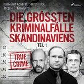Die größten Kriminalfälle Skandinaviens - Teil 1 von Tonny Holk