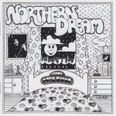 Northern Dream de Bill Nelson