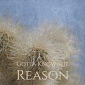 Gotta Know the Reason de Various Artists