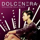 Evoluzione della specie 2 by Dolcenera