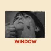 Window de Wy