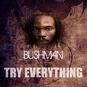 Try Everything by Bushman