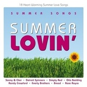 Summer Lovin' by Various Artists