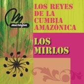 Los Reyes De La Cumbia Amazonica by Los Mirlos