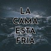 La Cama Esta Fria von Melchor Cayo