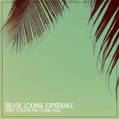 Brasil Lounge Experience de Various Artists
