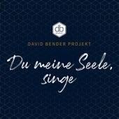 Du meine Seele, singe by David Bender Projekt