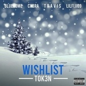 Wishlist / Christmas by Tok3n