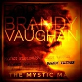 For Brandy Vaughan: Project Stapleclip by Mystic Man
