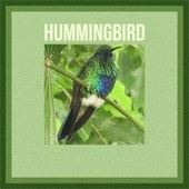 Hummingbird by Various Artists
