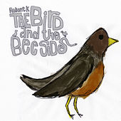 The Bird and the Bee Sides de Relient K