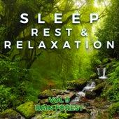 Sleep, Rest & Relaxation : Vol 9 Rain Forest by Rest Sleep