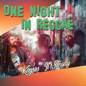 One Night In Reggae von Various Artists