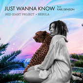 Just Wanna Know by Red Giant Project
