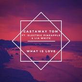 What Is Love de Castaway Tom